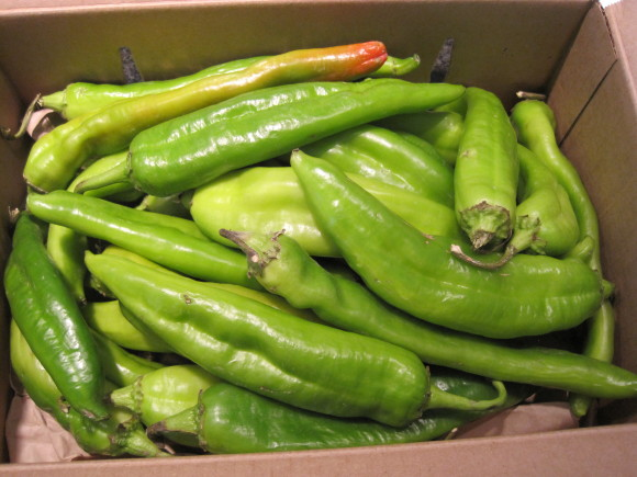 Hatch Chile's