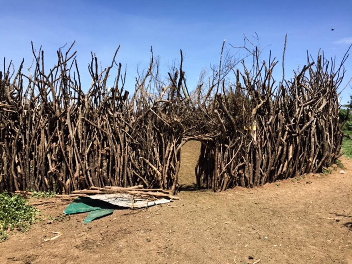 Serengeti, Africa- Maasai Village Boma