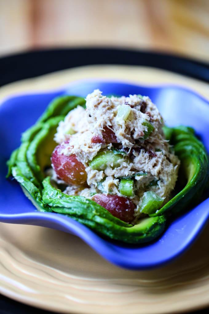 Skinny Napa Tuna Salad with Grapes,Celery, Dried Cranberries, & Scallions